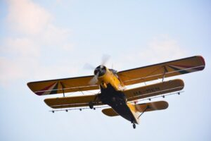 flying-Prskanje komaraca_800_533