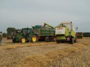harvest-837671_1280_800_600