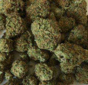 cannabis-1418339_1280_623_600