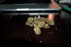 marijuana-505464_1280_800_535